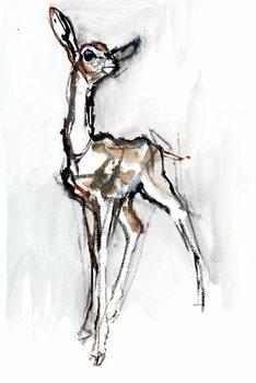 Gerenuk fawn, Sarara, 2018, Taidejuliste