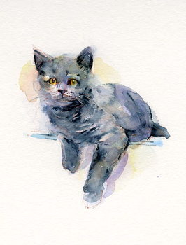 Grey kitten, 2017, Taidejuliste