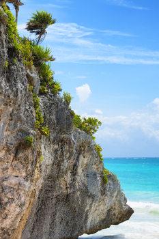 Eksklusiiviset taidevalokuvat Rock in the Caribbean