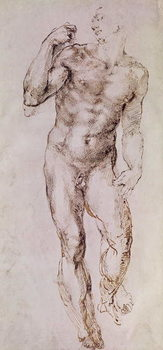 Sketch of David with his Sling, 1503-4 Taidejuliste