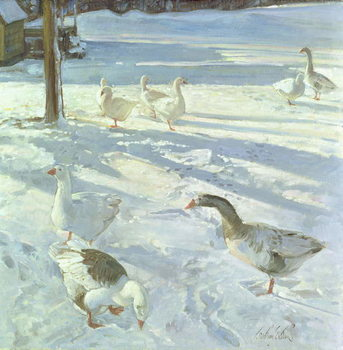 Snowfeeders, 1999 Taidejuliste