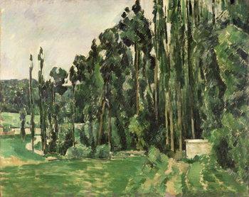 The Poplars, c.1879-82 Taidejuliste