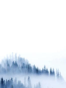 Kuva treeblue2