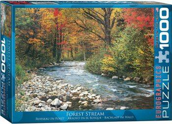 Palapeli Forest Stream
