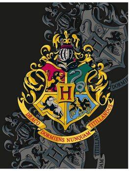 Viltti Harry Potter - Hogwarts