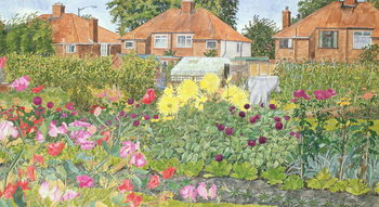Fine Art Print Allotments and Dahlias