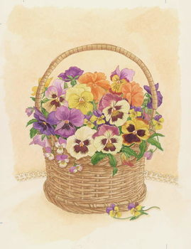 Fine Art Print  Basket of Pansies, 1998