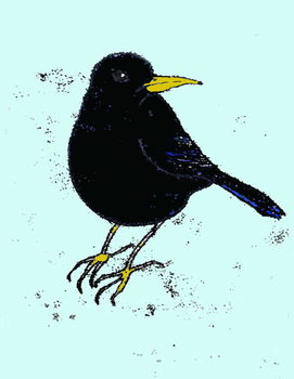 Fine Art Print Blackbird,2008