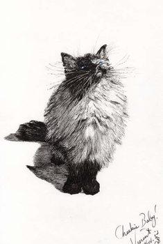 Fine Art Print  cheekie baby, 2008,