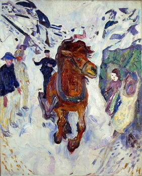 Fine Art Print Horse Gallop