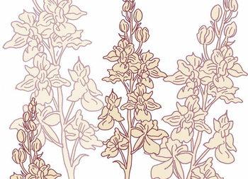 Fine Art Print Orchid, 2017,