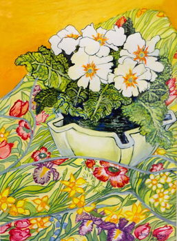 Fine Art Print Pale Primrose in a Pot with Spring-flowered Textile,2000