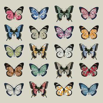 Fine Art Print Papillon, 2008