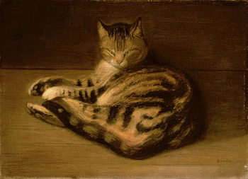 Fine Art Print Recumbent Cat, 1898
