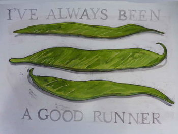 Fine Art Print Runner Beans,2013