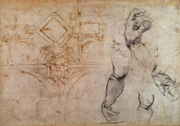 Fine Art Print  Scheme for the Sistine Chapel Ceiling, c.1508