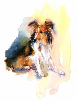 Fine Art Print Sheltie portrait, 2015,