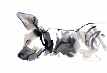 Fine Art Print Sleeping Hyaena, 2010,