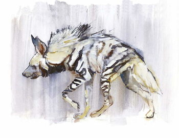 Fine Art Print  Striped Hyaena, 2010,