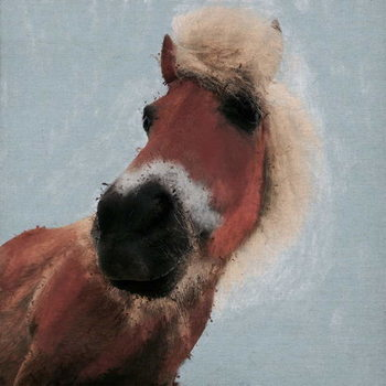 Fine Art Print Sussex Poney, 2019,