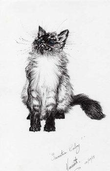 Fine Art Print sweetie baby, 2015,