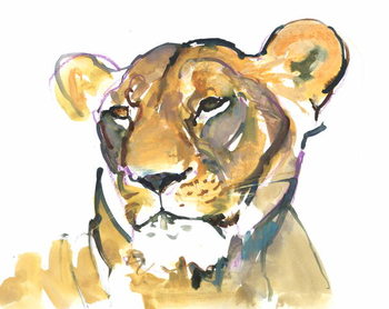 Fine Art Print The Lioness