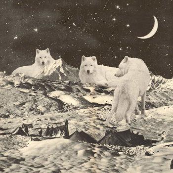 Fine Art Print Three Giant White Wolves on Mountains