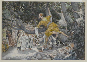 Fine Art Print Zaccheus in the Sycamore Awaiting the Passage of Jesus, illustration from 'The Life of Our Lord Jesus Christ', 1886-96
