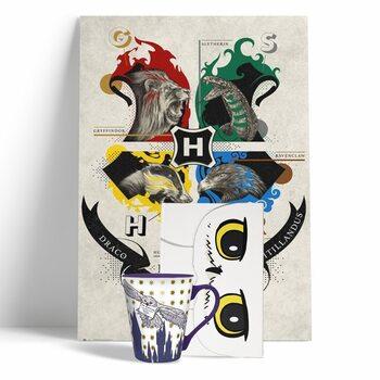 Gift set Harry Potter - Hedwig
