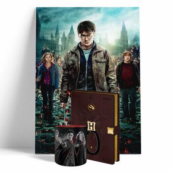 Pack oferta Harry Potter