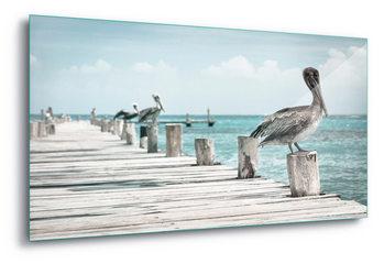 Glass Art  Pelican Patrol