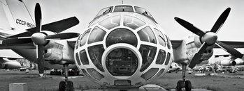 Glass Art Plane - Black and White