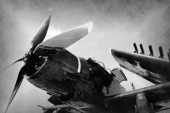 Glass Art Plane - Black and White Screw