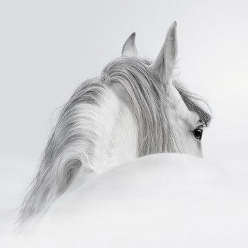 Glass Art White Horse