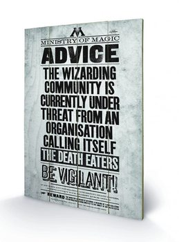 Harry Potter - Be Vigilant Panneaux en Bois