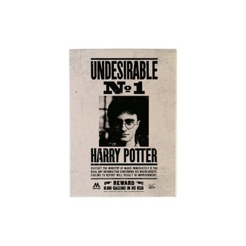 Íman Harry Potter - Undesirable No.1