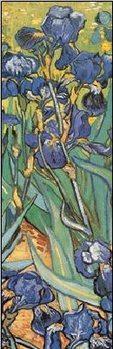 Irises, 1889 (part.) Reproduction d'art