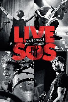 Juliste 5 Seconds of Summer - Live