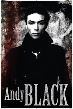 Juliste Andy Black - Stone