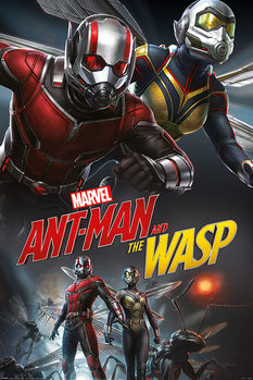 Juliste  Ant-Man and The Wasp - Dynamic