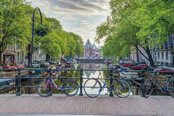 Juliste  Assaf Frank - Amsterdam