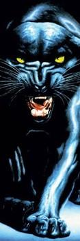 Juliste Black panther
