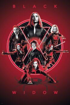 Juliste Black Widow - Legacy