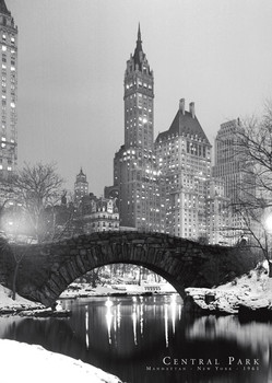 Juliste Central Park - 1961