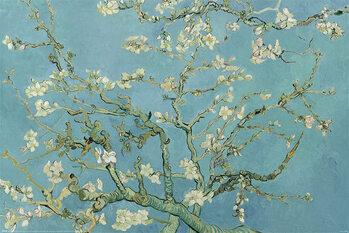 Juliste Claude Monet - Almond Blossom