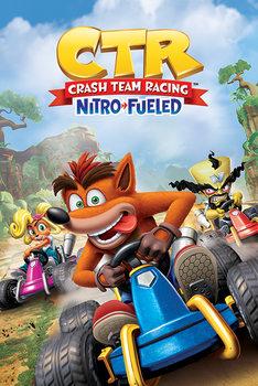 Juliste Crash Team Racing - Race