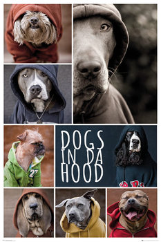 Juliste  Dogs In Da Hood - Dogs