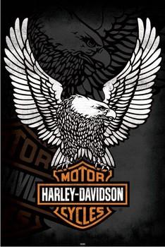 Juliste  Harley Davidson - eagle