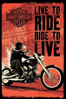Juliste Harley Davidson - live to ride