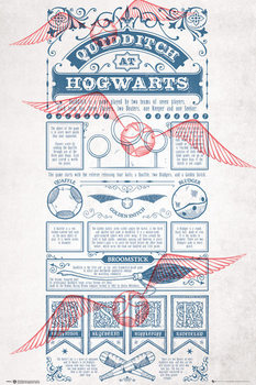 Juliste  Harry Potter - Quidditch At Hogwarts